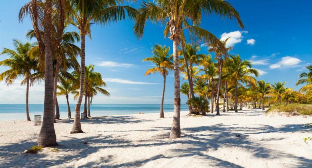 Crandon Park Miami