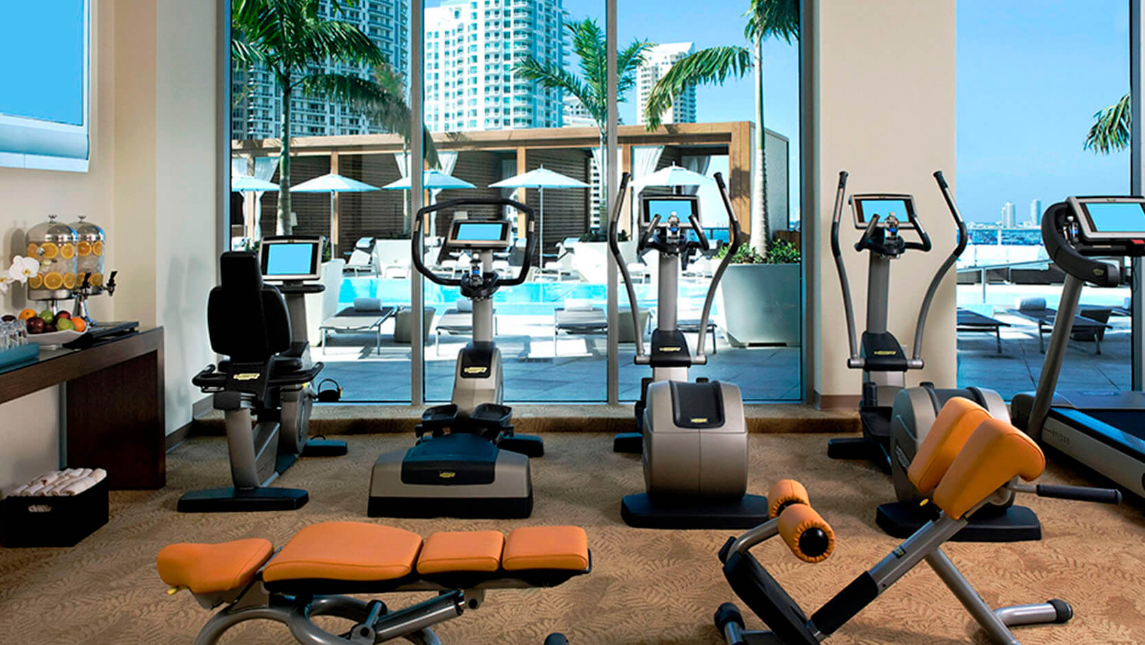 The Best Gyms in Miami