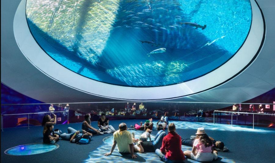 Miami Oceanarium